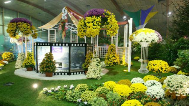 balade bucolique aux floralies de bourg en bresse photos. Black Bedroom Furniture Sets. Home Design Ideas