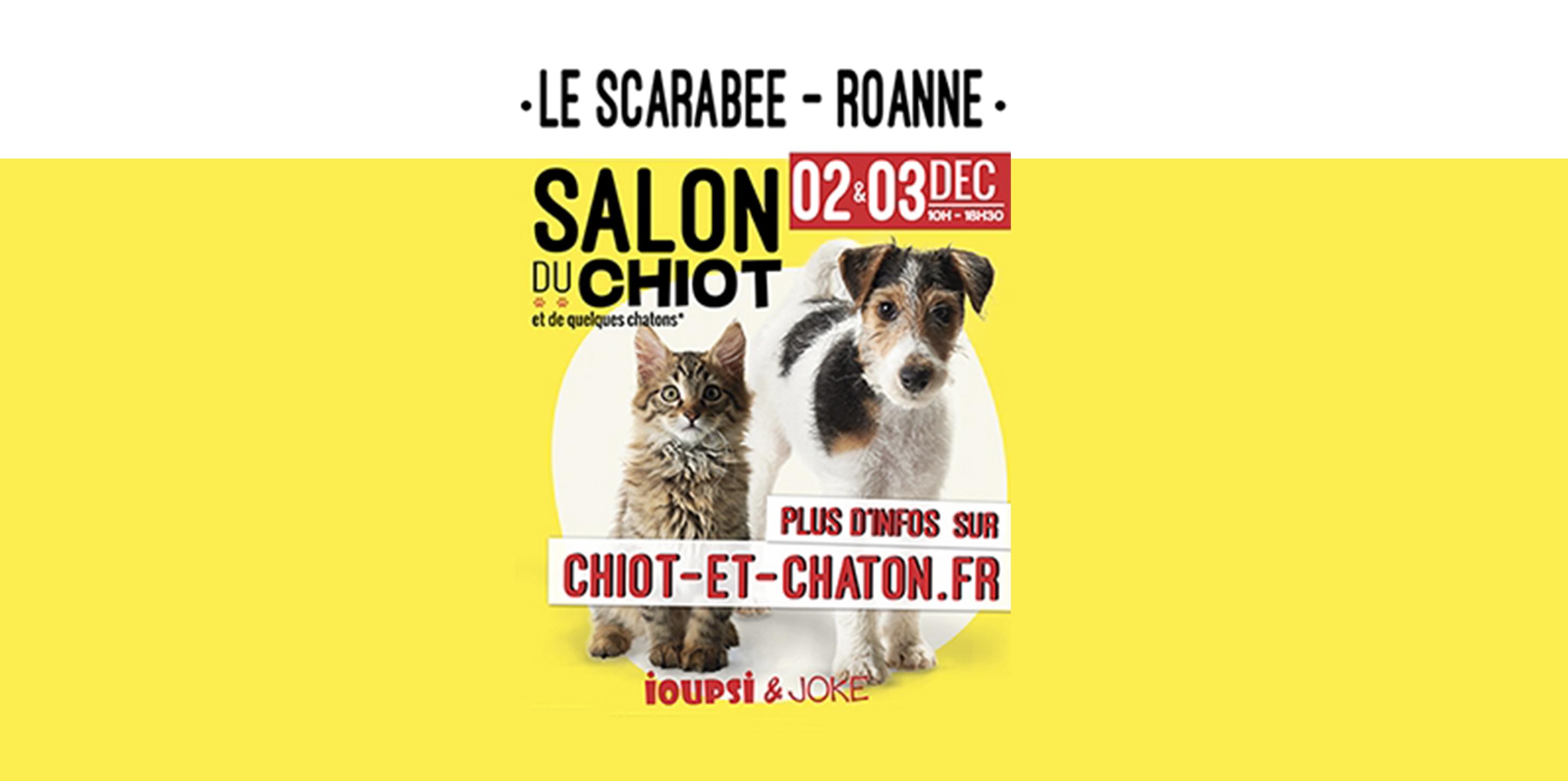 Salon du chiot au scarab e de roanne radio scoop for Salon du chiot lyon